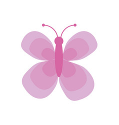 Cute pink butterfly insect vector