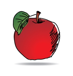 freehand drawing apple icon vector image