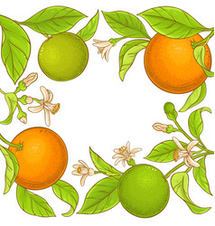 orange branch frame vector image