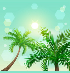 Tropical palm trees and sun in zenith vector