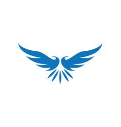 Wing bird logo template vector