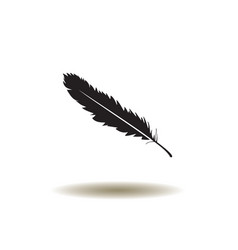 feather icon vector image vector image