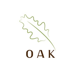 oak leaf design template vector image vector image