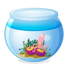 A bowl with squid and two jellyfishes vector