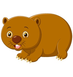 Cartoon cute wombat vector