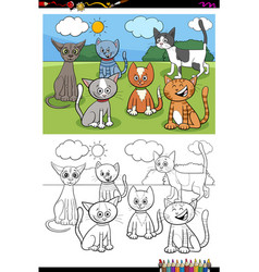 cats and kittens characters group color book page vector image