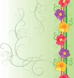 colorful flowers border on green vector image