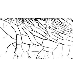 Cracks on surface white old paint vector