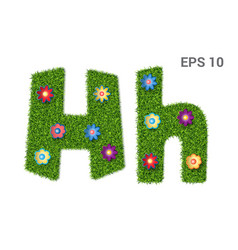 letter hh and flowers vector image
