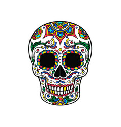 Mexican sugar skull with colorful floral ornament vector