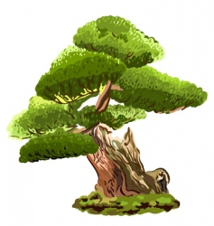 Old pine tree vector
