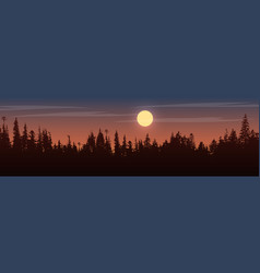 Panorama view to trees on sunset vector