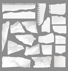 torn note paper scraps ripped blank pieces vector image