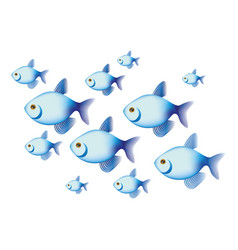 colorful set collection fish aquatic animal vector image vector image
