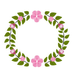 round flowers decoration design vector image