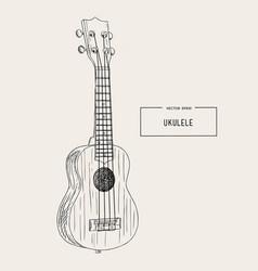 ukulele - hawaiian musical hand drawn sketch vector image