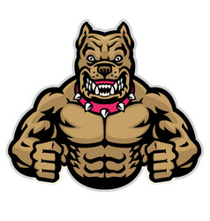 Angry muscle pitbull vector