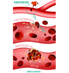 Blood clot formation vector