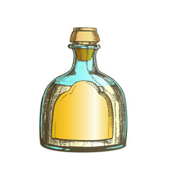 Color blown classic mexican tequila glass bottle vector