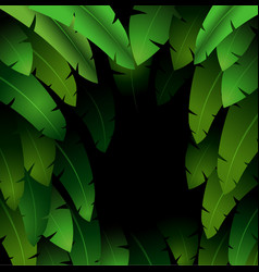 Exotic pattern with tropical leaves banana on a bl vector