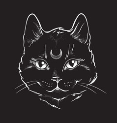 Gothic black cat with moon on his forehead vector