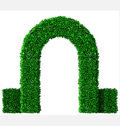 Green ivy grape arch vector