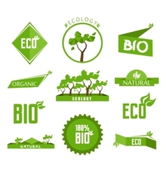 Green labels and badges set vector image vector image