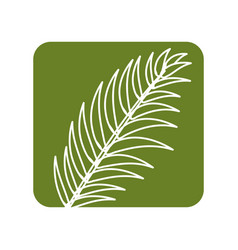 label tropical branch leaves plant vector image