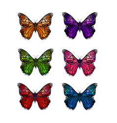 Set of different colorful butterflies on white vector