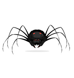 Black cartoon scary spider isolated vector