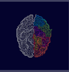 brain functions vector image