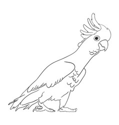 Cockatoo bird line art 02 vector