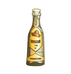 Color traditional mexican tequila drink bottle vector