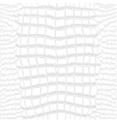 Crocodile skin gray and white seamless pattern vector
