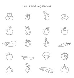 different fruits and vector image