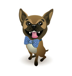 dog breed french bulldog beige french bulldog vector image