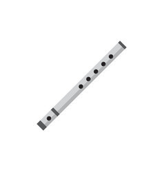 flute graphic design template isolated vector image
