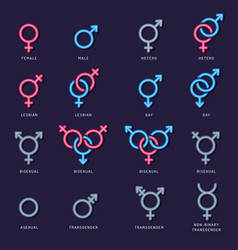 gender icon male female couple lgbt men woman vector image