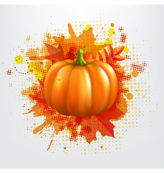 Grunge Background With Orange Pumpkin And Leaves vector image