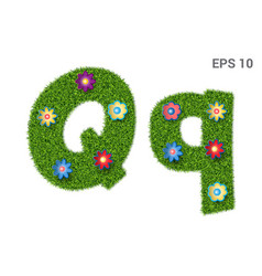 letter qq with a texture of grass and flowers vector image