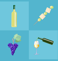 wine bottles ripe grapes and tasty canape set vector image
