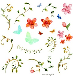 foliate elements watercolor painting vector image