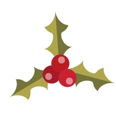 Holly icon Isolated on white background vector image vector image
