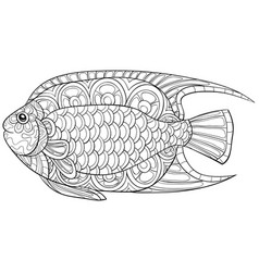 adult coloring bookpage a cute fish image for vector image