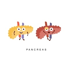 Healthy vs Unhealthy Pancreas Infographic vector