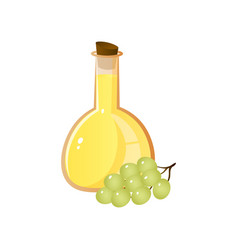 Home glass flask bottle with vinegar from green vector