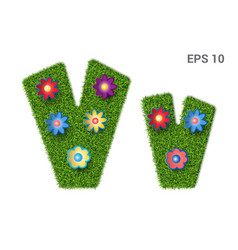 letter vv with a texture of grass and flowers vector image