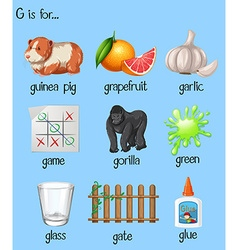 Many words for letter G vector