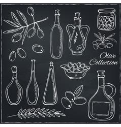 Olive sketch set with tree branch and oil bottle vector image