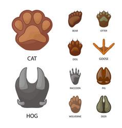 Animal and print icon vector